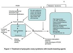 Body Owner's Guide to Diagnosis & Therapy of PCOS...good info on labs