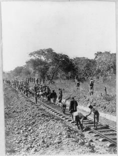 Man building railway planned by Cecil Rhodes near Broken Hill, Rhodesia.