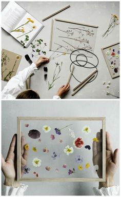 Frame by Moebe I wonder if you could just press flowers in-between glass like this? The post Frame by Moebe I wonder if you could just press flowers in-between glass like th appeared first on diy. Art Floral, Deco Floral, Floral Flowers, Diy Hacks, Craft Projects, Projects To Try, Diy And Crafts, Arts And Crafts, Fleurs Diy
