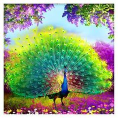DIY Diamond Painting Cross Stitch square Diamonds Embroidery Peacock Wealth and Good Fortune Diamond Mosaic Decor Peacock Painting, Peacock Art, Diy Painting, Male Peacock, Peacock Room Decor, Green Peacock, China Painting, Painting Canvas, Peacock Pictures