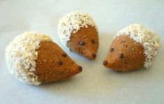 Paleo Hedgehog Cookies - Looking for a new healthy sweet treat that you can share with the kids? Here's a recipe from Grok Grub. So adorable!