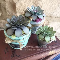 Oh So Succulent! #ohsosucculent #paperflowers #stampwithanita #succulents