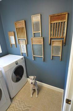 Vintage Washboard Collection in the laundry room.. what a cute idea