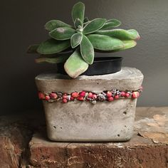 5x5x3H 2.30lb Concrete planter with a band of dried rose buds, lavender, and pepper berries, around the top. This cute little planter was so fun to make. I love the contrast of the flowers and concrete. Its a little unexpected. The flowers are pretty durable I actually shipped it