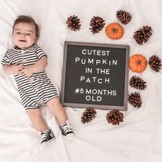 In this video I take you along a great family day at the pumpkin patch. Fall Baby Pictures, Baby Boy Photos, Military Baby Pictures, Halloween Baby Pictures, Baby Christmas Photos, Funny Baby Pictures, Newborn Baby Photography, Photography Props, Family Photography