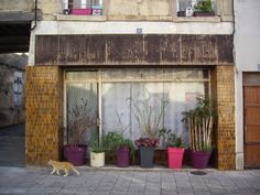 France : Varzy, rue Delangle