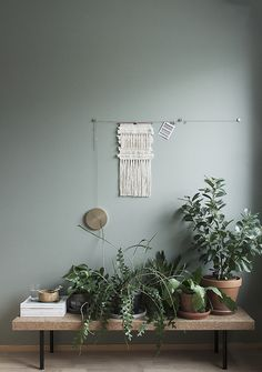 green wall with plan