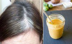 Descubra uma RECEITA para ESCURECER CABELOS BRANCOS NATURALMENTE . Uma RECEITA NATURAL que além de tudo, ainda FORTALECE  sua SAÚDE e faz o CABELO CRESCER . Venha CONFERIR, CLIQUE NO LINK ABAIXO http://www.aprendizdecabeleireira.com/2017/02/receita-para-escurecer-cabelo-branco.html