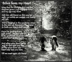 Echos from my Heart Art Print by Sue Long. All prints are professionally printed, packaged, and shipped within 3 - 4 business days. Choose from multiple sizes and hundreds of frame and mat options. Dog Love, Puppy Love, Pet Poems, My Best Friend, Best Friends, Pet Loss Grief, Pet Remembrance, Thing 1, Old Dogs