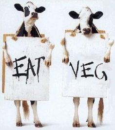 Eat Veg...