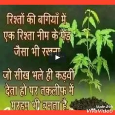 Good Morning Video Songs, Good Morning Sunday Images, Good Morning Arabic, Good Morning Friends Quotes, Morning Prayer Quotes, Good Morning Image Quotes, Buddha Quotes Life, Positive Quotes For Life, Good Morning Hindi Messages