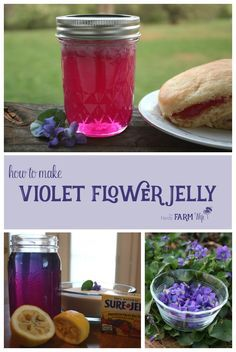 How to Make Homemade Violet Flower Jelly (Tastes delicious, similar to grape jelly! Jelly Recipes, Jam Recipes, Canning Recipes, Real Food Recipes, Yummy Food, Canning Tips, Cooker Recipes, Drink Recipes, Tasty