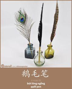 鹅毛笔 - Émáo bǐ - bút lông ngỗng - quill pen