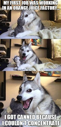 Bad Pun Dog - http://wittybugs.com/bad-pun-dog-6/