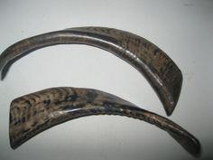 2 Goat horns ..0V2B68.....Polished goat horns....