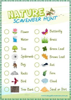 Fun printable for children to learn about animals and nature