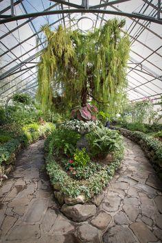 Allan Gardens 17