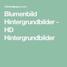 Blumenbild Hintergrundbilder - HD Hintergrundbilder