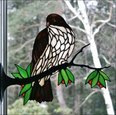Stained Glass Red Tail Hawk by Chippaway Art Glass