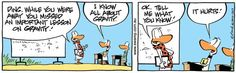 Ding Duck knows the laws of gravity too well.  www.swamp.com.au #AviationHumor