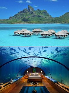 Cocktail leader: Underwater bedroom hotel Underwater bedroom hotel in the MALDIVE. Vacation Destinations, Dream Vacations, Vacation Spots, Terre Promise, Places To Travel, Places To See, Underwater Bedroom, Places Around The World, Around The Worlds