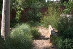 This is similar to how I imagine my own garden will look in time hopefully! Australian Garden Design, Australian Native Garden, Australian Plants, Bush Garden, Dry Garden, California Garden, Villa, Natural Garden, Garden Inspiration