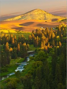 Palouse River and Steptop Butte - Idaho