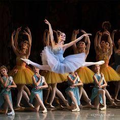 Ideas for dancing shoes quotes ballet dancers Dance Photos, Dance Pictures, Vaganova Ballet Academy, La Bayadere, Dancer Photography, Ballet Pictures, Ballet Dancers, Ballerinas, Ballet Beautiful