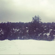 Snow day in Idyllwild (: