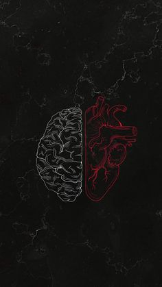 Brain vs Heart iPhone Wallpaper - iPhone Wallpapers