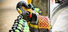O símbolo de Elefante no Feng Shui deve ter sempre a tromba para cima? Descubra se isso é verdade e o significado deste animal para a técnica chinesa.