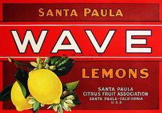 Wave Lemons. #crateart