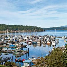 Friday Harbor San Juan Island - One time we moored there, I asked a fisherman who had just come in if he had any extra fish. he picked out the biggest salmon he had, fillet it, and gave it to me. what a great memory of days past. Places In Usa, Oh The Places You'll Go, Great Places, Places To Travel, Places To Visit, Orcas Island, San Juan Islands, Dream Vacations, Dream Trips