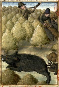 «Comme on doit lessier courre pour le sanglier» (f°60) -- «Le livre de la chasse fait et compilé par Gaston, qui jadiz fu conte de Fois, seigneur de Bearn»,  milieu du XVe siècle, Paris, [Bibl. Mazarine, Ms 3717]