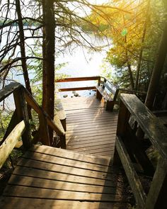 This Boardwalk Trail Takes You Through An Ancient Forest In Ontario Woods Photography, Landscape Photography, Ocean Photography, Photography Tips, Portrait Photography, Travel Photography, Wedding Photography, Places To Travel, Places To See