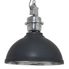Hazlett Dome Pendant Williston Forge Size: 59 cm H x 52 cm W x 52 cm D, Finish: anthracite Drum Pendant, Globe Pendant, Lantern Pendant, Dar Lighting, Globe Lights, Lamp Light, Light Fixture, Rome, Ceiling Lights