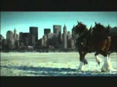 """This commercial makes me cry every time I watch it - """"We'll Never Forget"""" - Budweiser Commercial Sept 11th."""