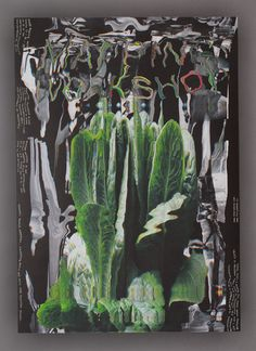 Mikromapping Big Poster — The Rodina