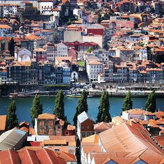 A whole new world A dazzling place I never knew But now from way up here It's crystal clear that now I'm in a whole new world with you Porto . Portugal July 2015 by wainmaaro7