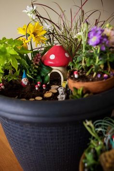 How to Make a Fairy Garden Video - Learn how to make your very own DIY fairy garden with this crafting video.