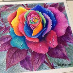 #colorpencil #rosecolor #rpenze #rosanapenze #stillfe