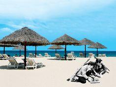 ArtAsiaPacific: Tropicana Migration