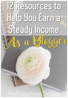 Want all the best resources for earning a steady income as a blogger in one spot? Here is what is worked for me and continues to bring in an income as a stay at home mom blogger!  via @frugalfarmgrl
