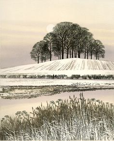 Snowhill by Kathleen Caddick : Official Site: Leading independent contemporary art gallery. Original Print, Paintings, Collectors Works and Studio Pottery for sale. Buy quality fine art securely on-line, at home or from our Devon based gallery Landscape Drawings, Watercolor Landscape, Landscape Art, Landscape Paintings, Art Drawings, Watercolour, Linocut Prints, Tree Art, Printmaking