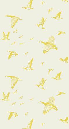 Flock in Flight wallpaper from Lake August
