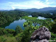 Taman Negara, the world's oldest (130 million years old) tropical rainforest.