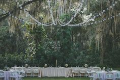 d2553e011d28dcbe05def83c9eaefb34--wedding-venues-wedding-reception.jpg (736×490)