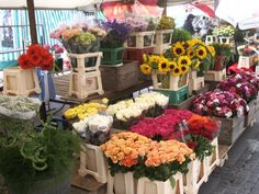 Flowers at a Farmer's Market in Salzburg, Austria. Pictures don't do it justice. It was beautiful and smelled even better.