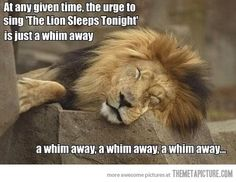 A whim away…