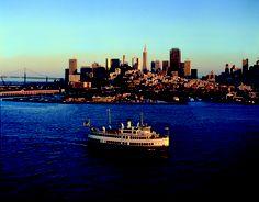 Hornblower Dinner Cruise on the bay!